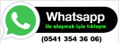 whatsapp logo resmi