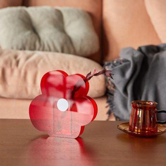 kırmızı papatya vazo